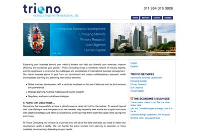 Website Design Consulting Firm